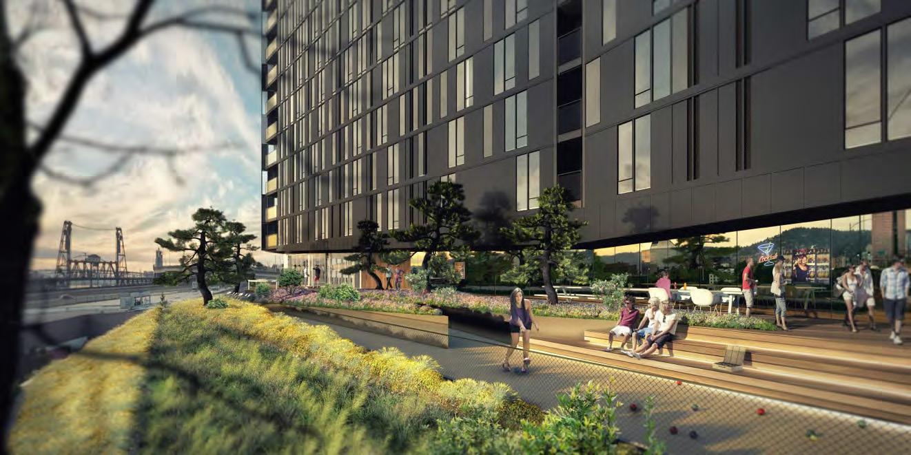 Yard-Sideyard Skywalk